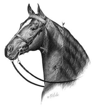 Choose Rohde for exceptional quality horse art & more!