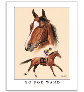 Go For Wand filly thoroughbred horse picture art print horseracing portrait