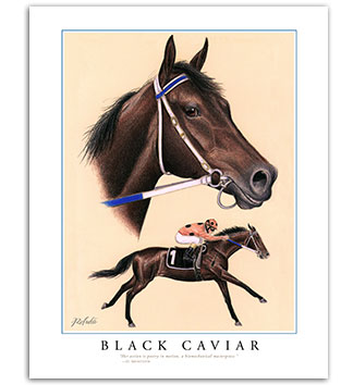 Black Caviar art painting print horse racing framed equine
