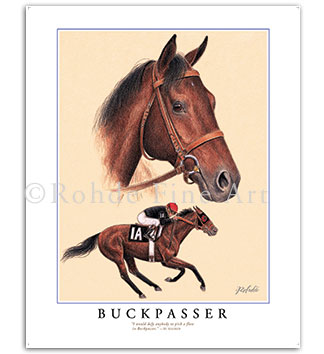 Buckpasser Thoroughbred horse racing art paintings prints gifts