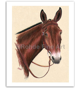 Mule art paintings longears prints