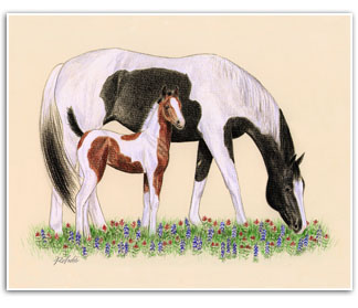 Paint Horse mare foal Texas horses wildflowers art