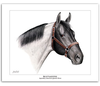 Blue Valentine AQHA Quarter Horse art prints pictures