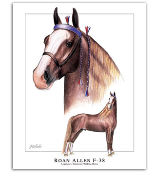 Roan Allen F-38 foundation Tennessee Walker horse art print