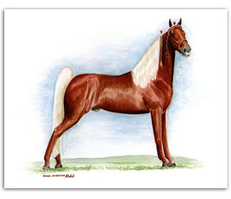 Prides Generator Tennessee Walker horse art prints paintings Walking Horse