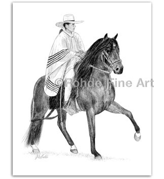 Peruvian Horse Art Paso drawing pencil artist