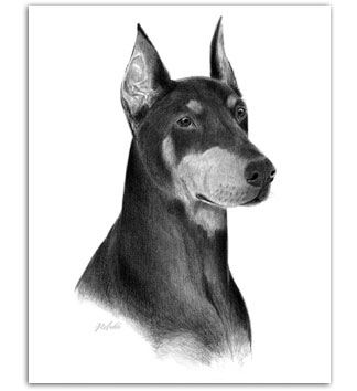 Doberman dog art paintings prints dobie dobe