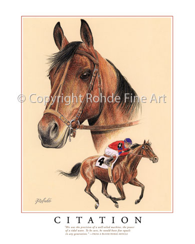 Citation Thoroughbred Horse Racing Art For Sale Paintings By