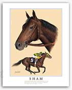 Sham thoroughbred horse racing art painting
