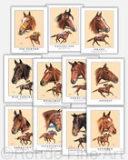 Triple Crown champions winners thoroughbred horse racing framed art prints gift items collectibles