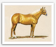 Cutter western palomino cutting horse art painting Quarter Horse