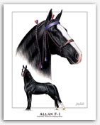 Allan F-1 Tennessee Walker foundation sire Walking horse art pictures