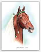 Pride's Generator Tennessee Walker horse art portraits Walking Horse gifts